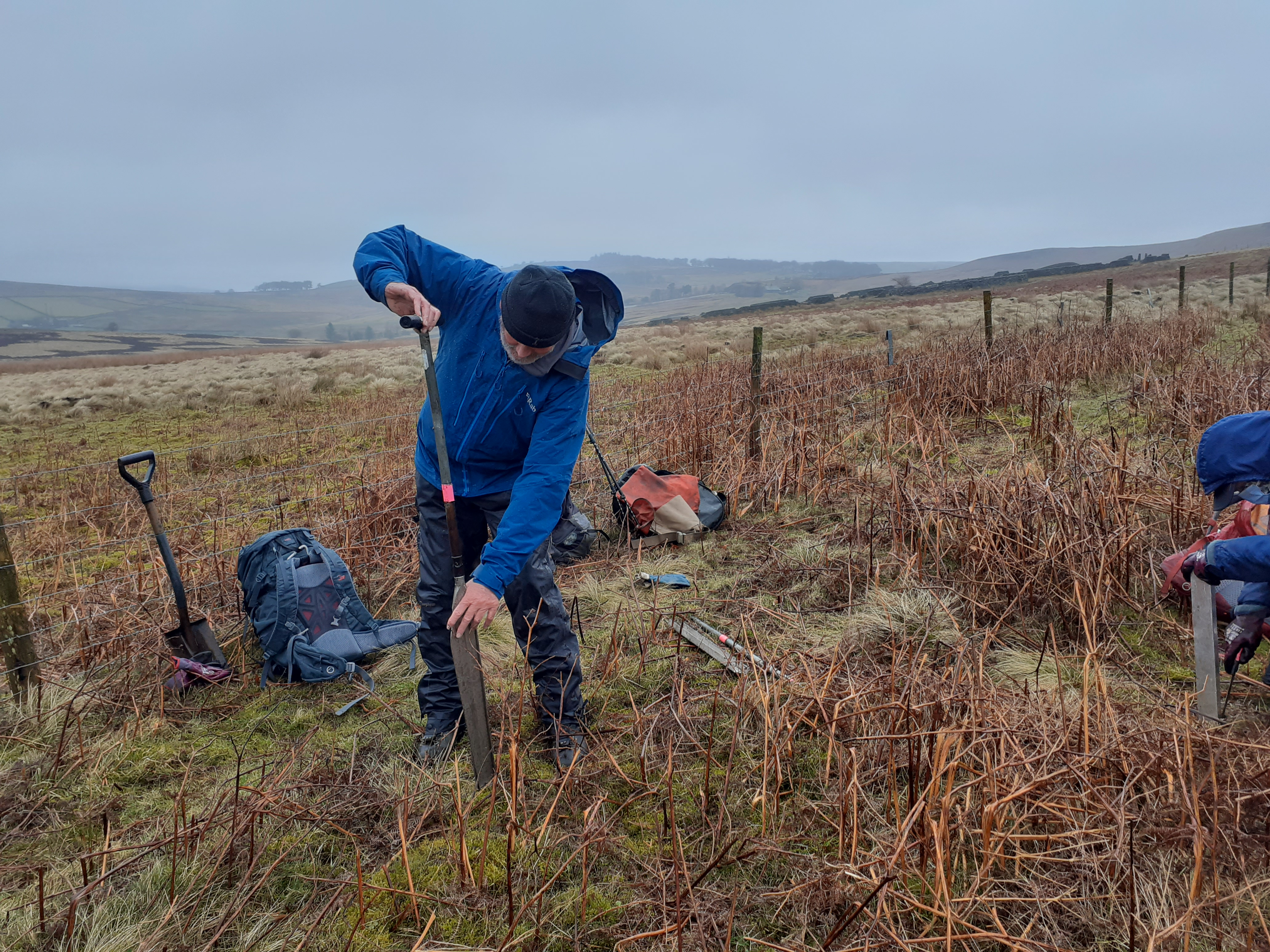 Taking peat cores