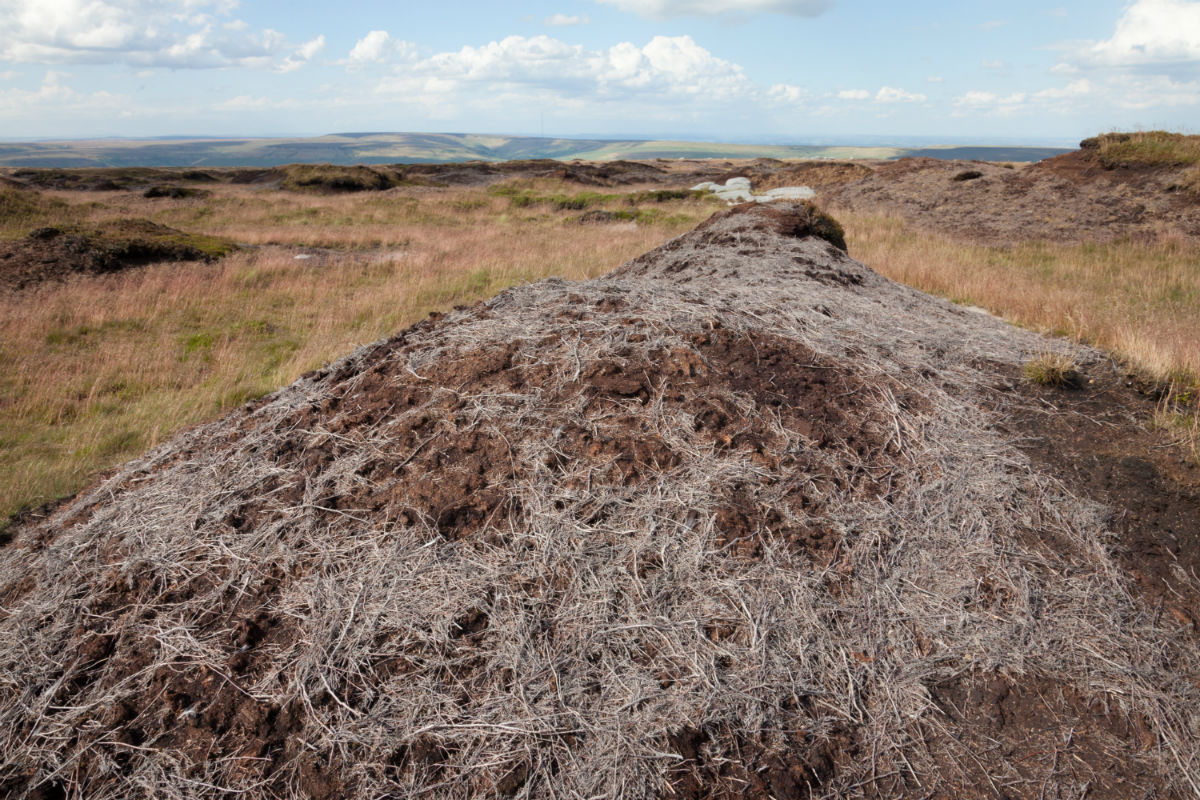 Image of bare peat on Bleaklow before the project commenced