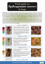 Image of the field guide to sphagnum mosses