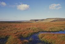 Image of Bleaklow