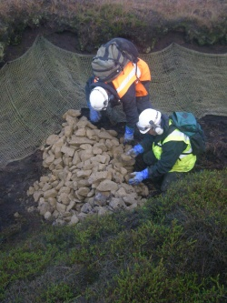 Image of workers blocking a gully