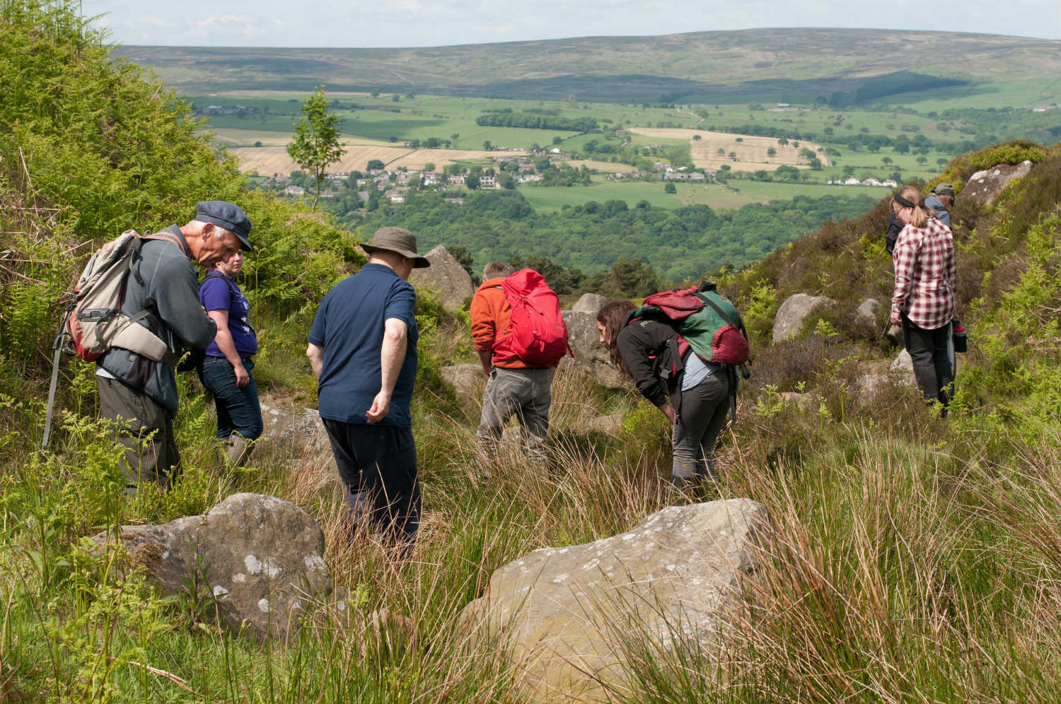 Tails of the Uplands surveyors