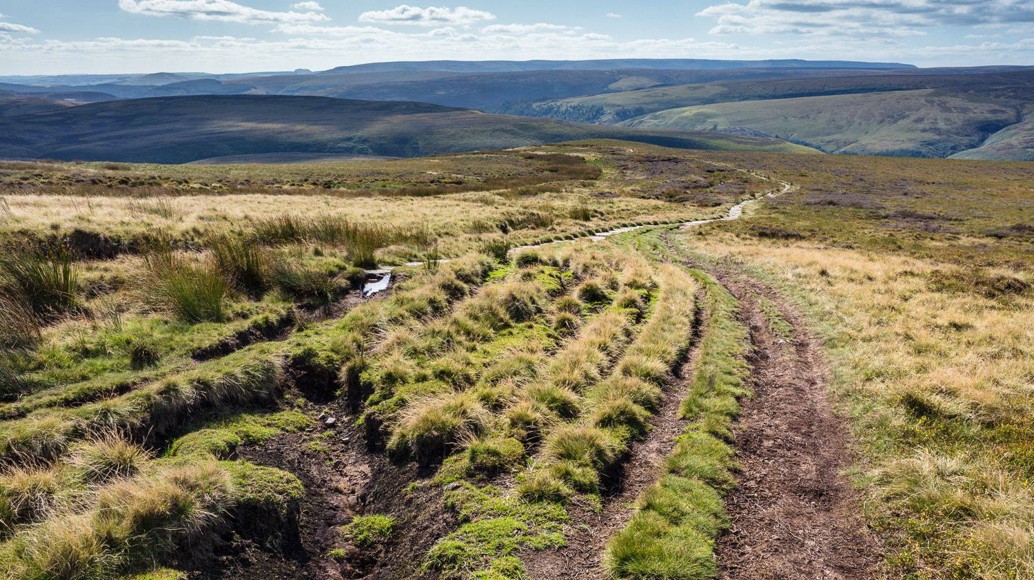 Rutted path on Howden Edge