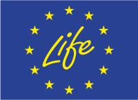 Image of the Life logo