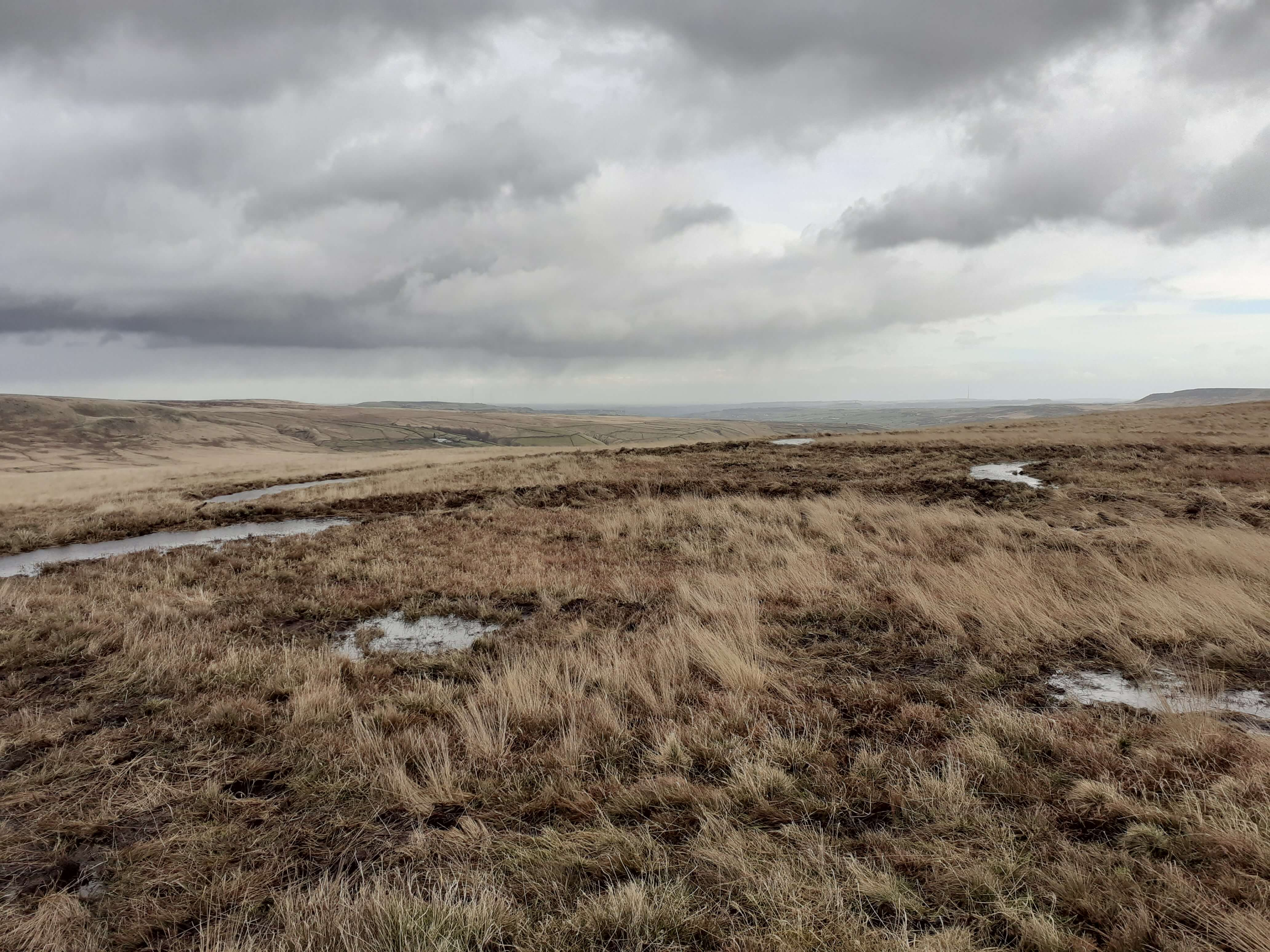 Bunds on the moor