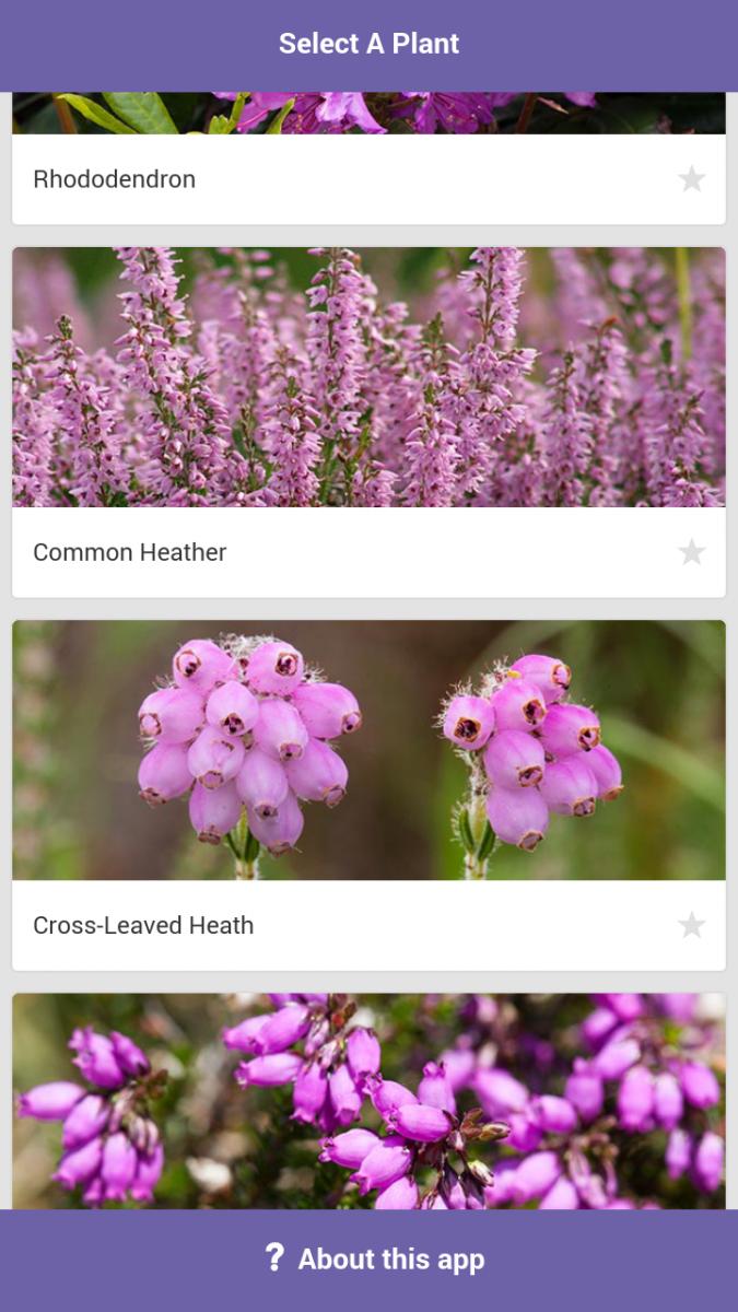 Screenshot of the MoorPLANTS app