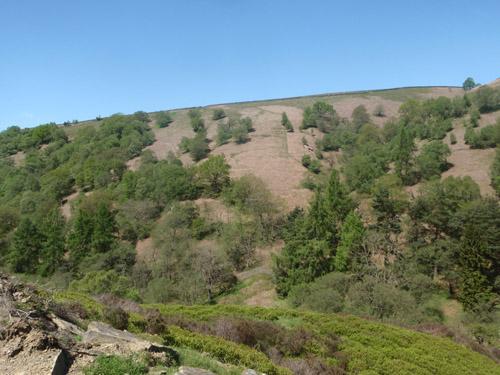 Landscape-Guide-MoorSights-Factsheet.pdf