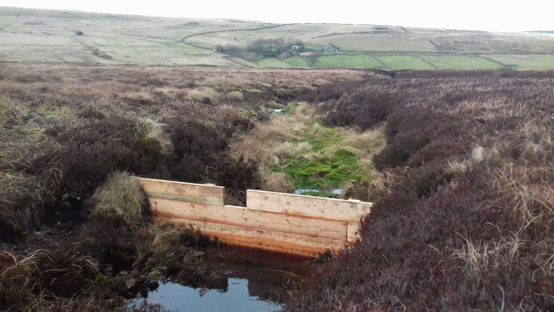 Timber dam