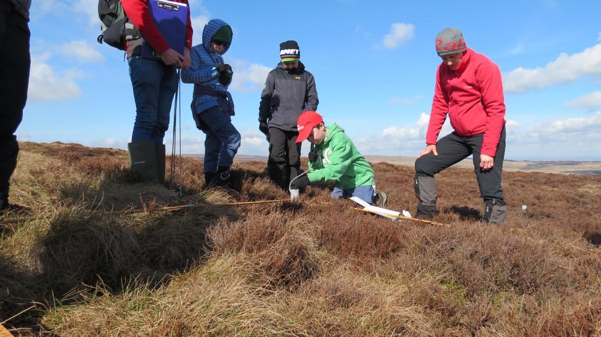 Young rangers surveying vegetation