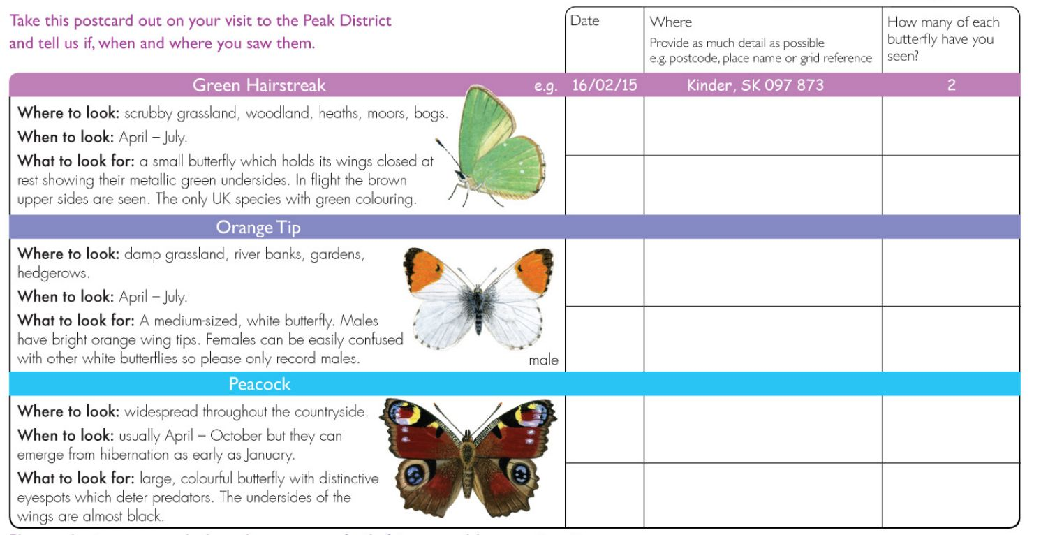 Survey form for recording butterflies