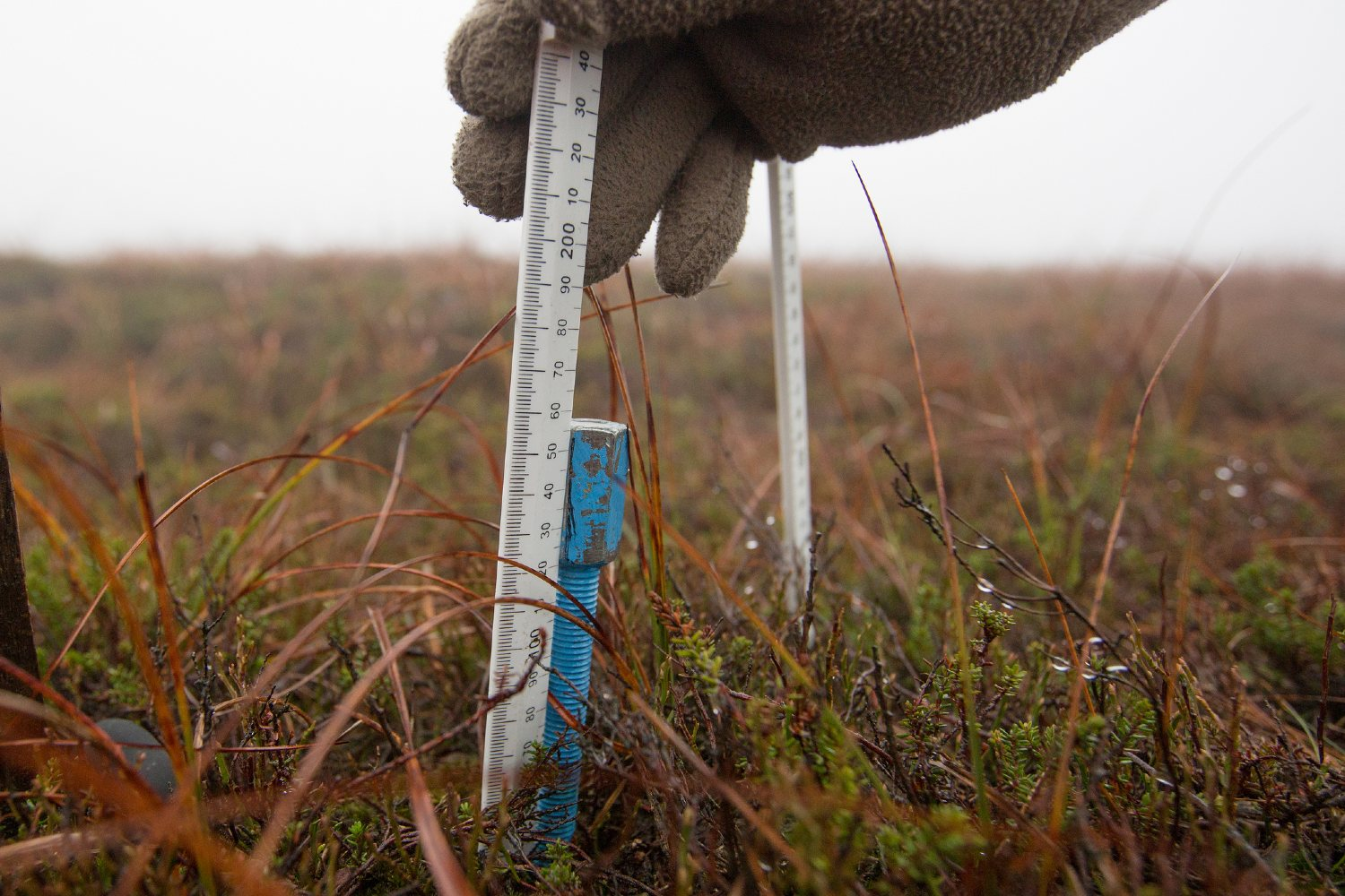 Measuring on the moors