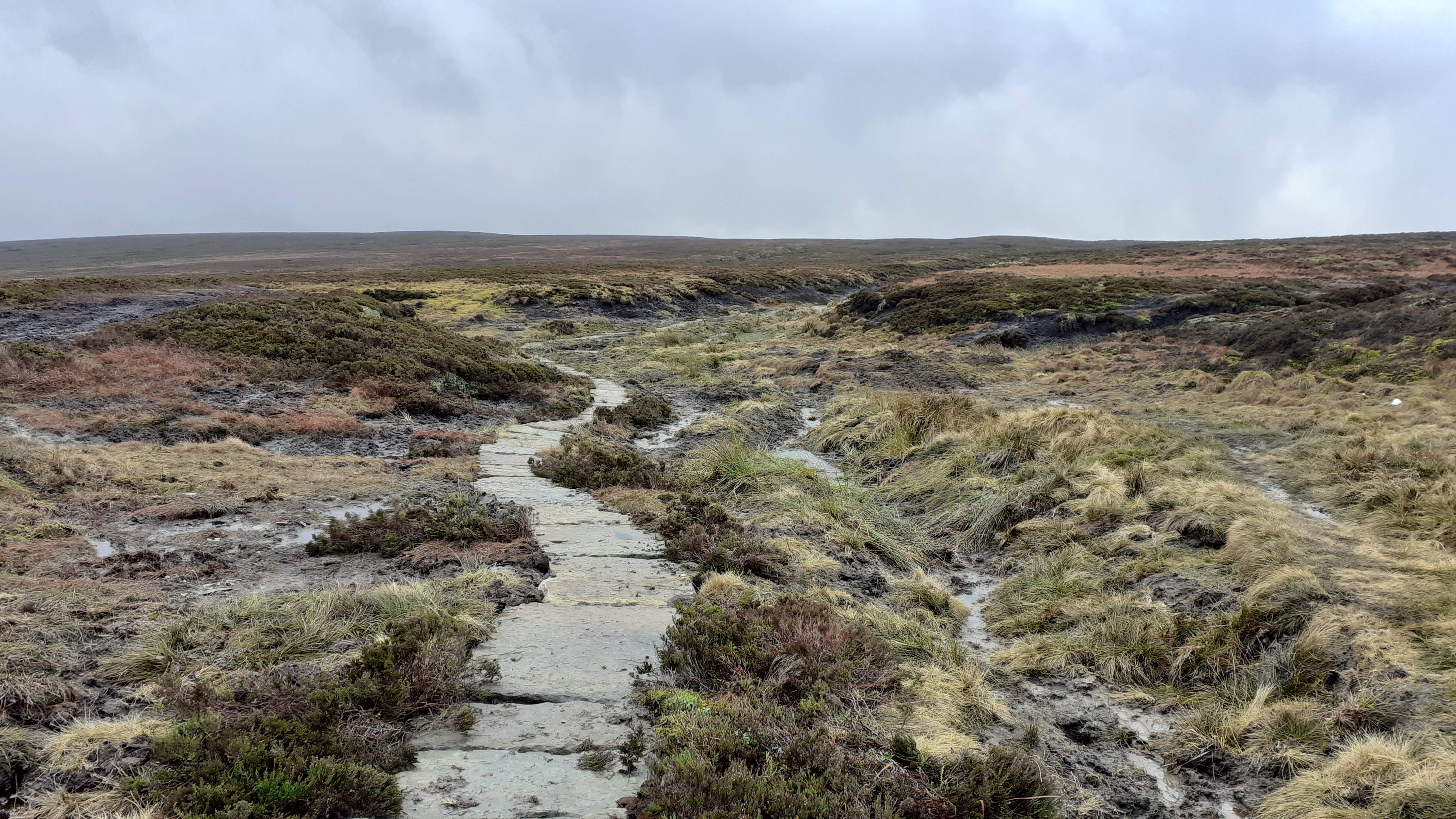 The bog of doom with new flagstones