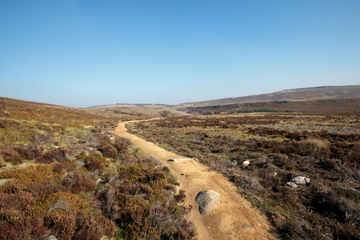 Cutthroat Track works