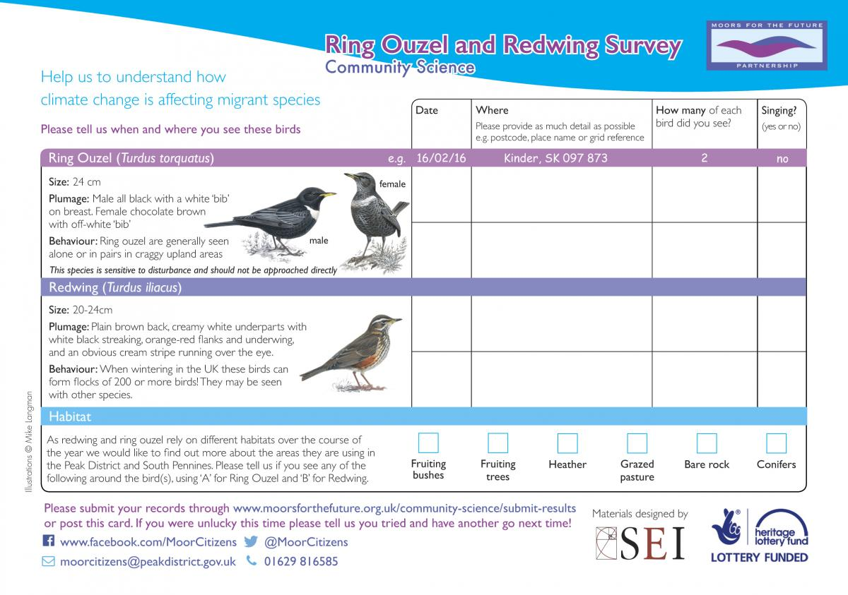 Ring Ouzel and Redwing Survey Postcard