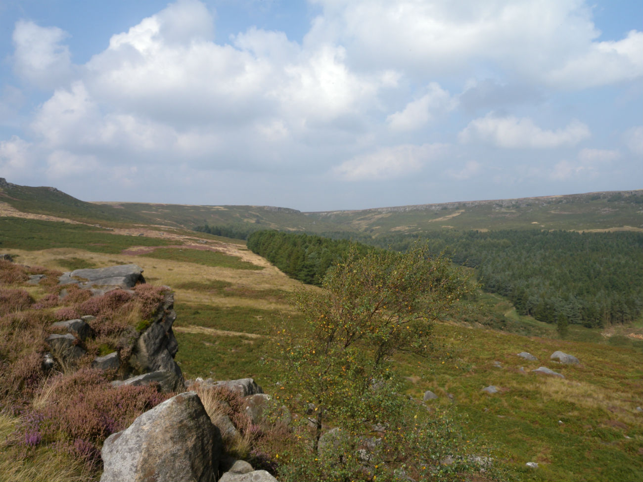 Hills covered in grass looking out to Burbage