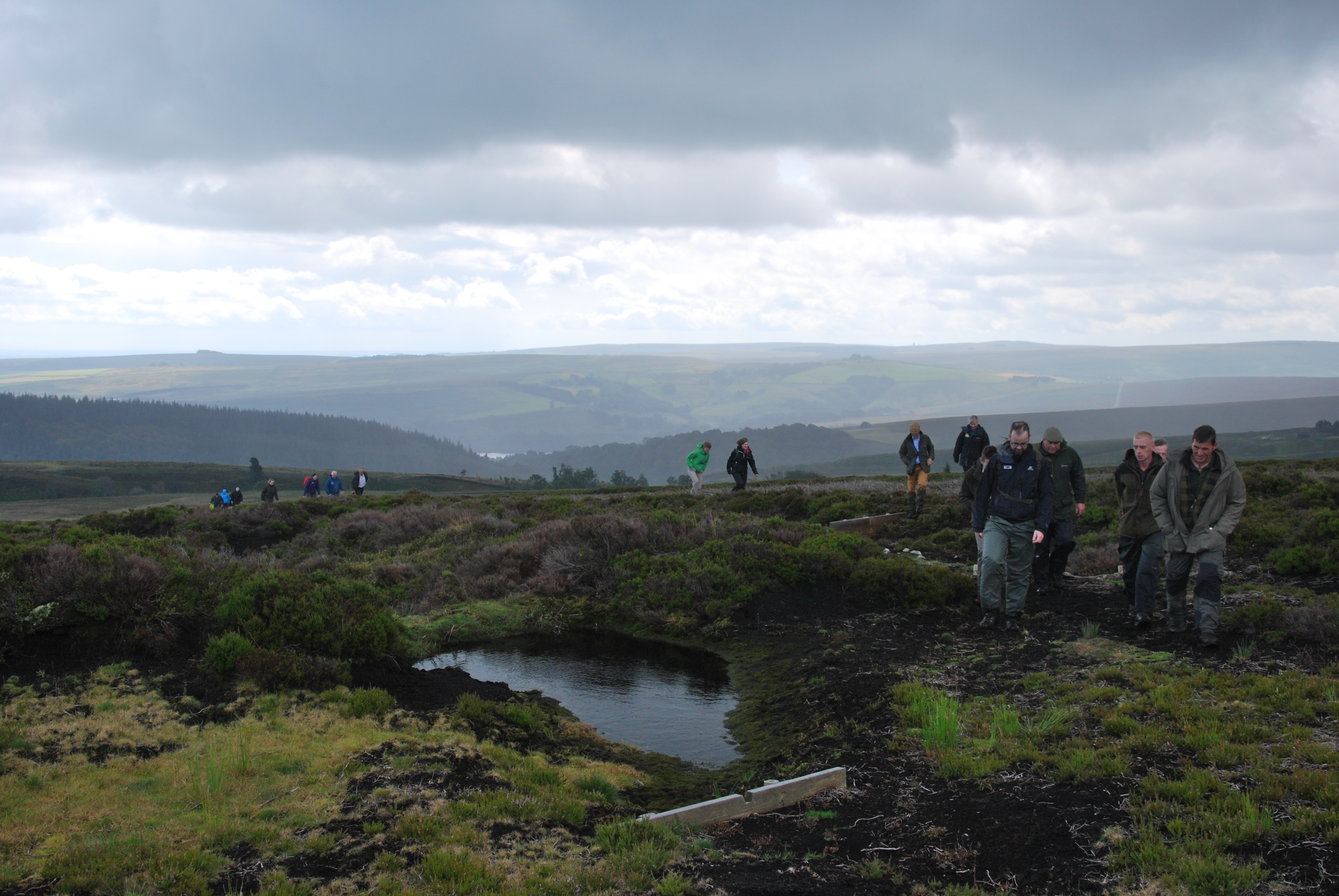 The Heather Trust Conference in the Peak District on Bradfield Moor
