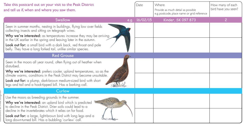Moorland Bird Survey