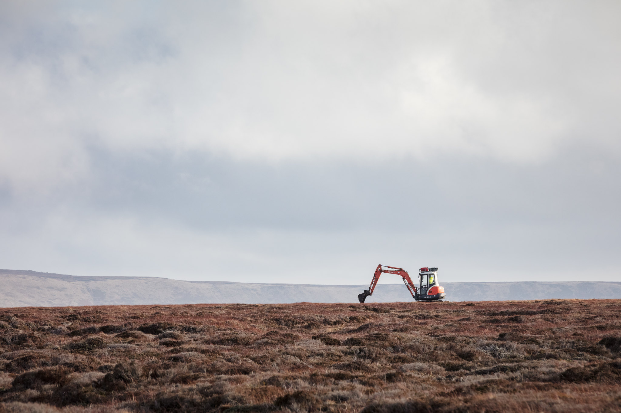 Conserving the moorlands