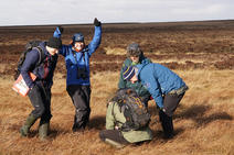 Volunteers cheering when planting Sphagnum on a bog