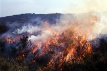 Fire blazing on moorland